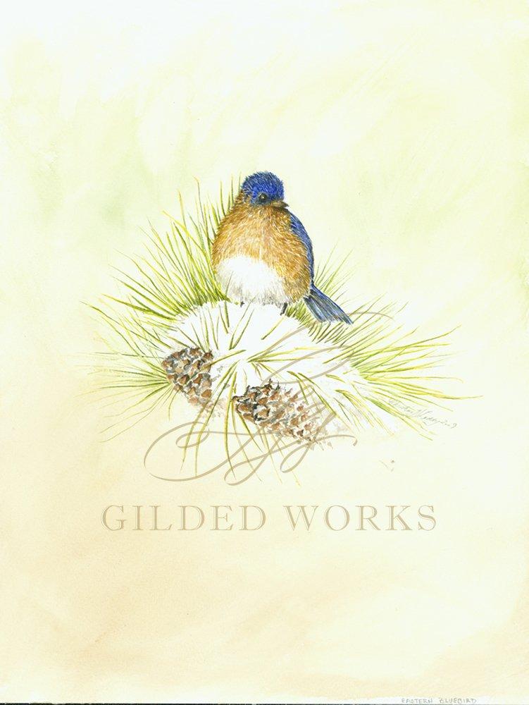 bluebirdadj